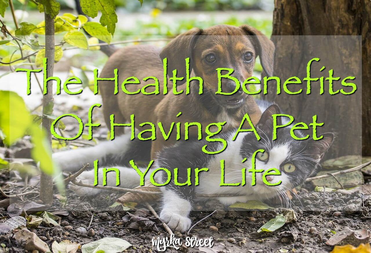 The Health Benefits Of Having A Pet In Your Life (INFOGRAPHIC)